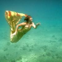 underwater art_25