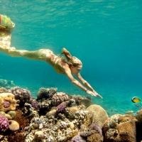 underwater art_5