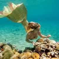 underwater art_64